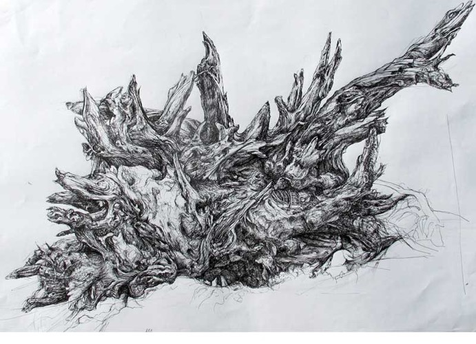 Tree Roots, Bushy Park pen drawing 82 x 56 cm
