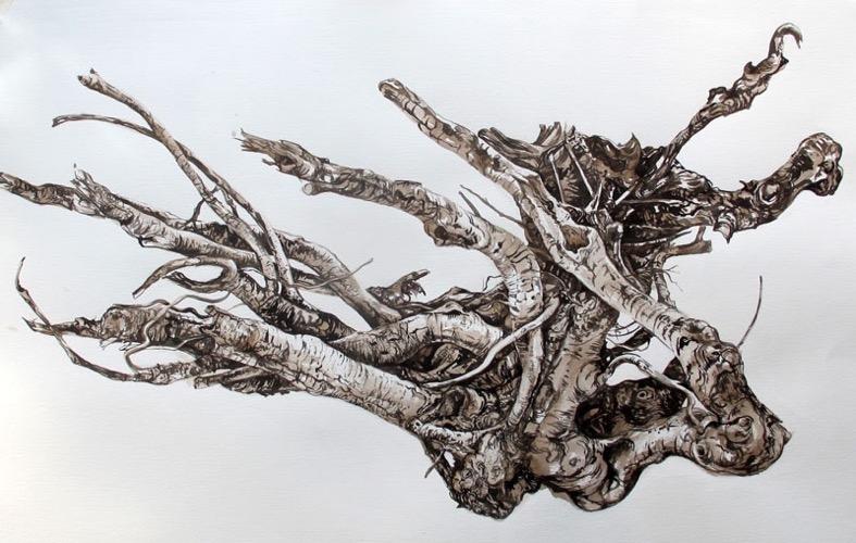 Study of Beached Tree Branch (2), Skye monochrome watercolour 95 x 60 cm